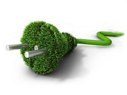 groenestekker